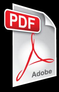 pdf-icon-194x300